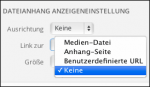 Wordpress: Link zur Mediendatei