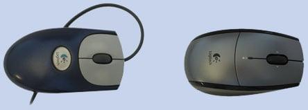 maus / mouse