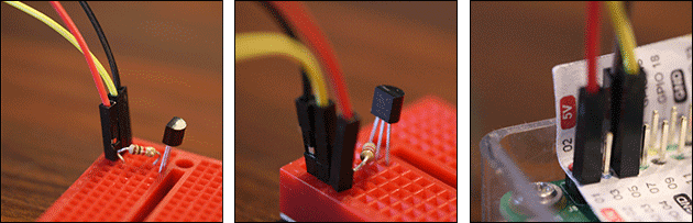 1-Wire Temperatur-Sensor DS18B20 am Raspberry Pi