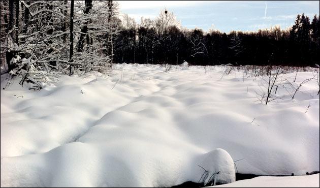 Schneewarnung FHEM