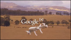Google [x] - Project Wing