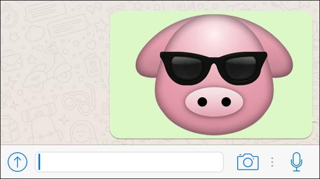 Wegen Schweine-Emoji vor Gericht!