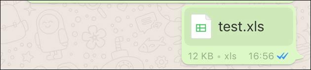 WhatsApp Excel XLS